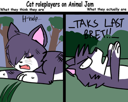 Cat Roleplayers On Animal Jam by KOLACOLE