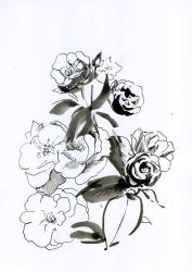Black-and-white-rose-bush by Joinerra