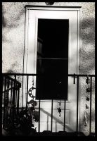 Protected Door. by fablehill