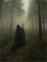 Tales From Eastern Woods Part IV by SHUME-1