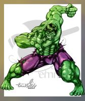 The Incredible Hulk by emmshin