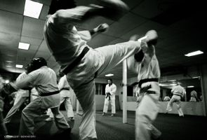 KARATE 2 by mrbenno