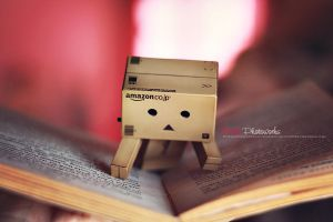 Danbo's Reading by bwaworga