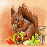 Squirrel by Milana87