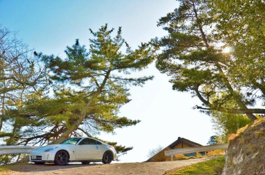 White Fairlady under a Pine Tree by Furuhashi335