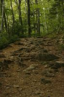 Rocky Trail by CageyResources