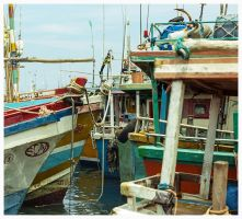 Maze of Boats by Roger-Wilco-66