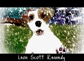 Leon Scott Kennedy The Dog by DontYouDareKickThat4