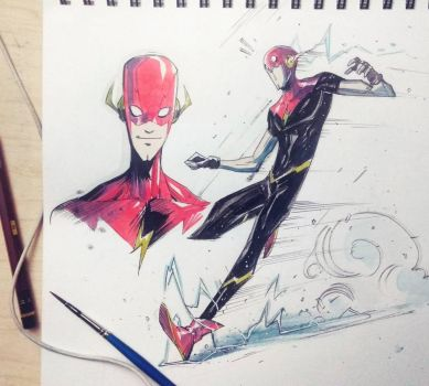 The Flash by COLOR-REAPER