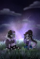 [Gift] Stars and flowers by Shadow-Nights