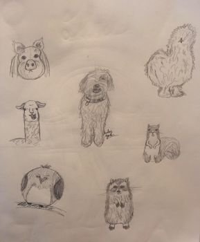 Animal Doodles by erbyderby24
