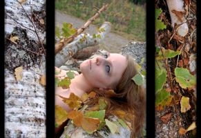 Autumn Triptych by BrakeHeart
