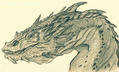 Smaug The Stupendous by RossmaniteAnzu