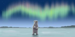Polar bear by m-a-r-i