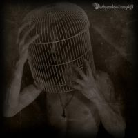 The cage by CountessBloody