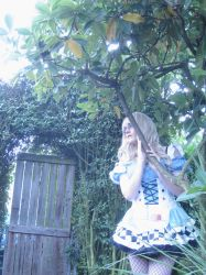 Alice Lost In Wonderland by Time4CD