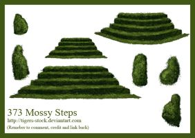 373 Mossy Steps by Tigers-stock