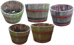 flower barrel png by gd08