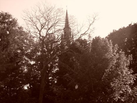 Sepia High Kirk by WCT