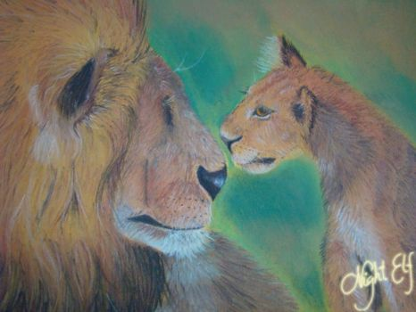 Lions by Nic1ky