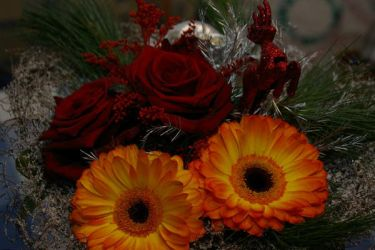 Christmas Boquet by WaffleTopStock