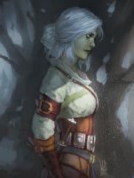 Ciri. by mkw-no-ossan