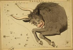 Vintage Astrology-Taurus by HauntingVisionsStock