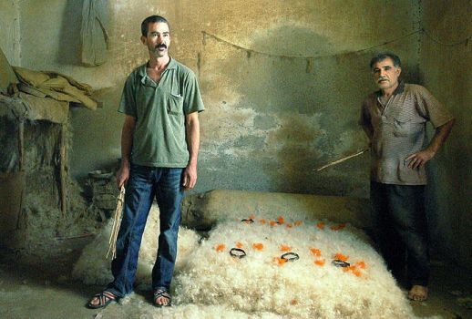felt carpet workers VI by fotoizzet