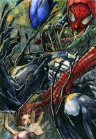 Venom Spiderman MJ ATC Colors by DKuang