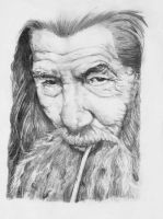 The Hobbit - Gandalf Portrait by Ori-Clayfoot