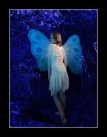 Moonlight Fairy by BFG