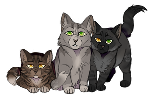 Dovewing and tigerheart's kits by th1stlew1ng