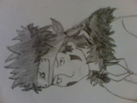 Kiba from naruto first try by tallybabz