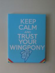 Keep calm and trust your wingpony by Vector-Brony