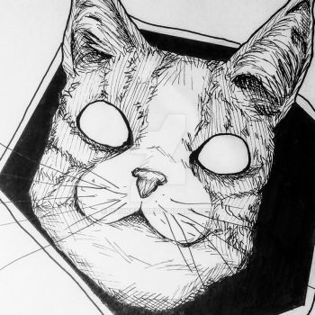 druged cat by Rauk621