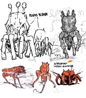 Amphoran Fauna sketches by povorot