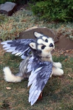 Poseable toy commission :Husky  puppy with wings by MalinaToys