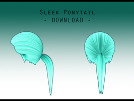 Sleek Ponytail [ DOWNLOAD ] by PeachMilk3D