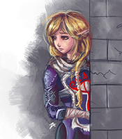 Sheik - Disguised Princess by itftjte