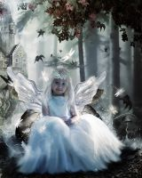 The Fairy Princess by Miss-deviantE