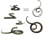 Curling Snake 3d Stock snakes by madetobeunique