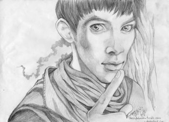 Merlin in pencil by Slashpalooza