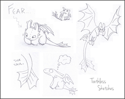 Toothless Sketches 2 by Mirka-Dragon