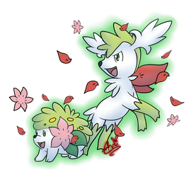 Shaymin by Avi-the-Avenger