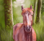 Art trade - Mustang horse by feiarth
