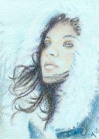 Whispers of Winter ACEO by Carol-Moore