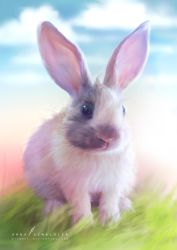 Easter rabbit by cylonka