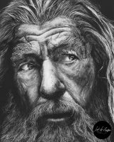 Pencil drawing of Gandalf the Grey by artbyhoussam