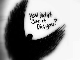 You didnt see it, did you? by Cryptdidical