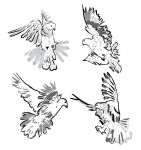 Artistic Pigeons Vector Pack by gabrielmeono